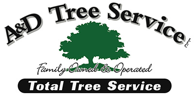 A and D Tree Service